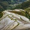 Рисовые террасы Longji