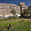 Огород в старом городе Саны