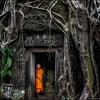 Затерянный в джунглях Ангкор