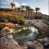 Йемен. Пейзаж Сокотры
