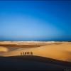 Групповая фотография на фоне дюн