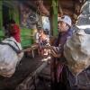 Рабочий из вулкана Иджен взвешивает корзины с серой