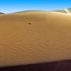 Песчаные дюны