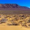 Степь переходящая в Казахстанскую пустыню