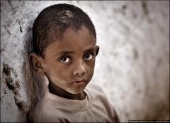 Йемен 2010 г