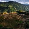 Рисовые террасы Longsheng